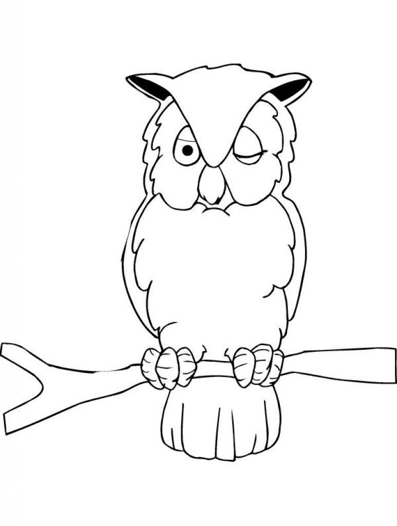 owl coloring pages coloringpages1001 com